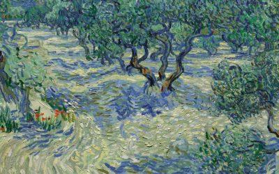 """Toter Grashüpfer auf Van Gogh's Gemälde """"Olive Trees"""" blieb 128 Jahre unentdeckt"""