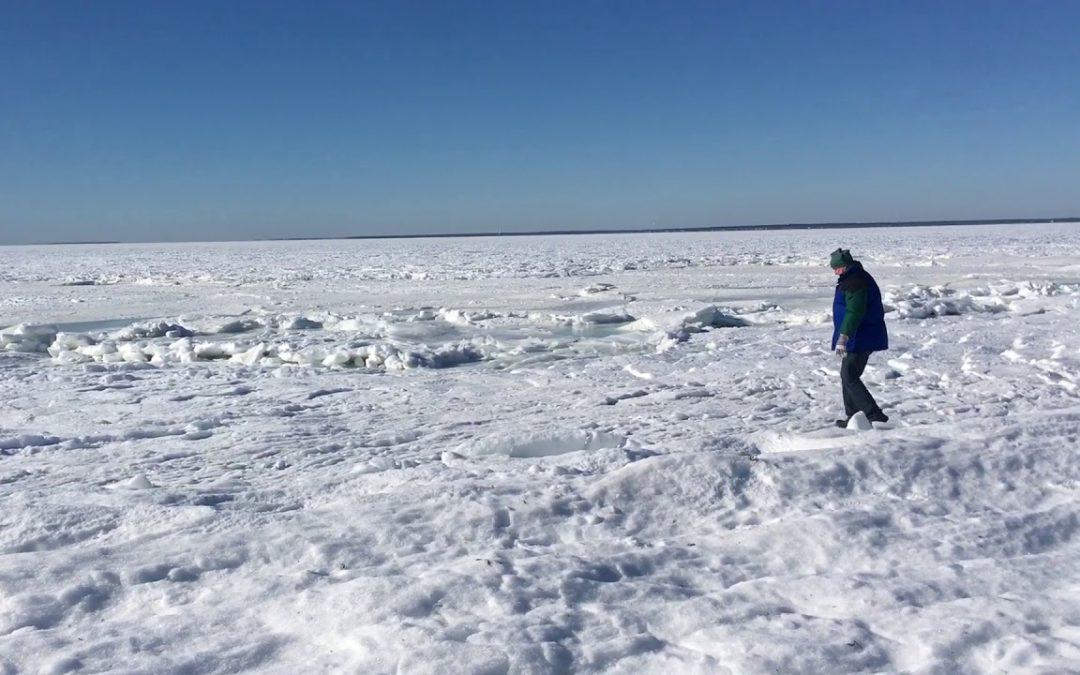 Wenn der gesamte Ozean gefriert